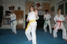 Training im Dojo 20.12.13_15